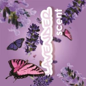 Lavender_final.jpgbig